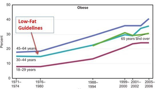 low fat guidelines and diabetes