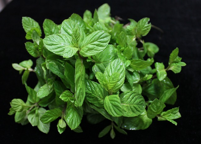 How to use Mint Leaves to improve your skin